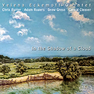 In the Shadow of a Cloud front art SMALL
