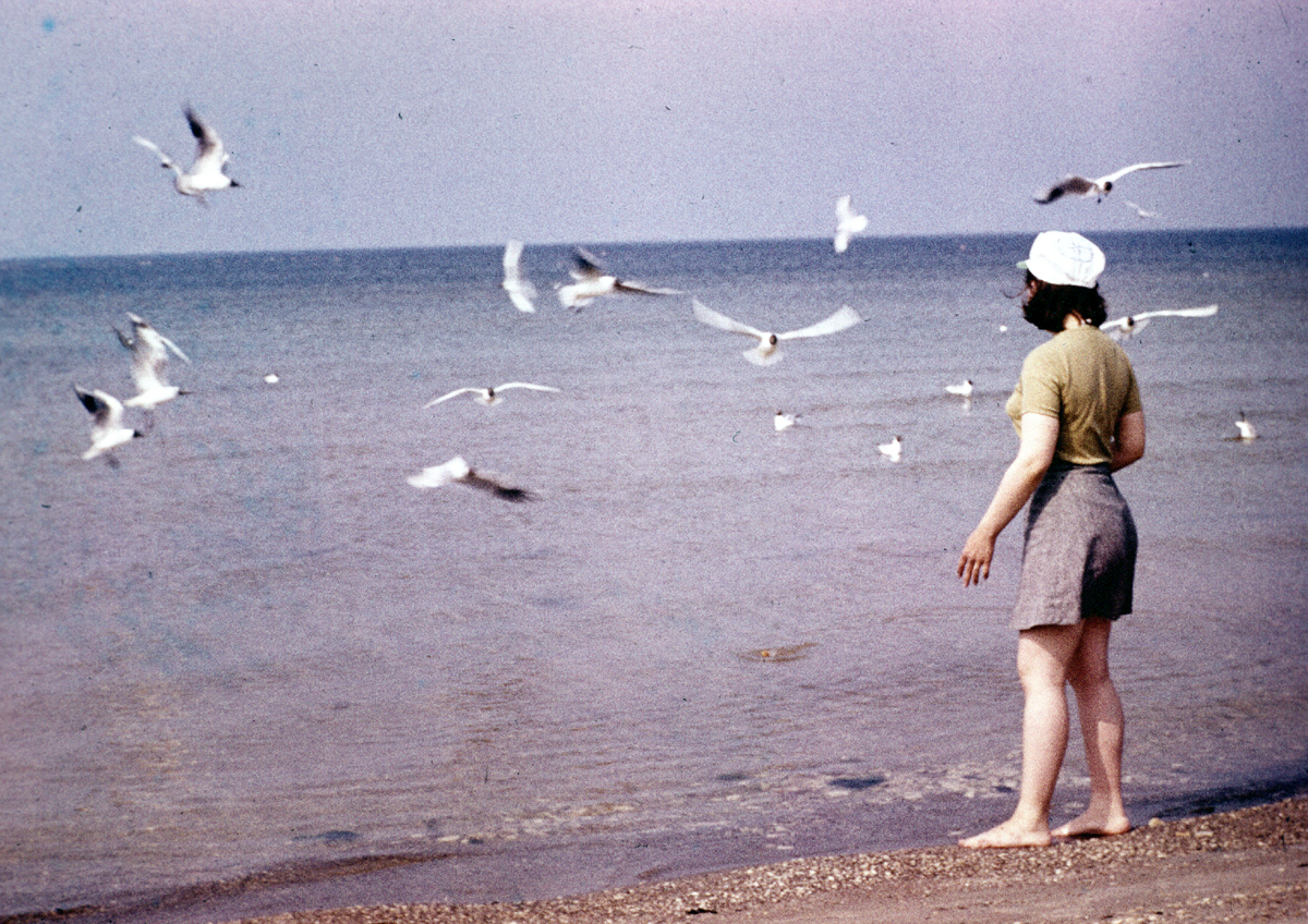Yelena and sea birds, 81